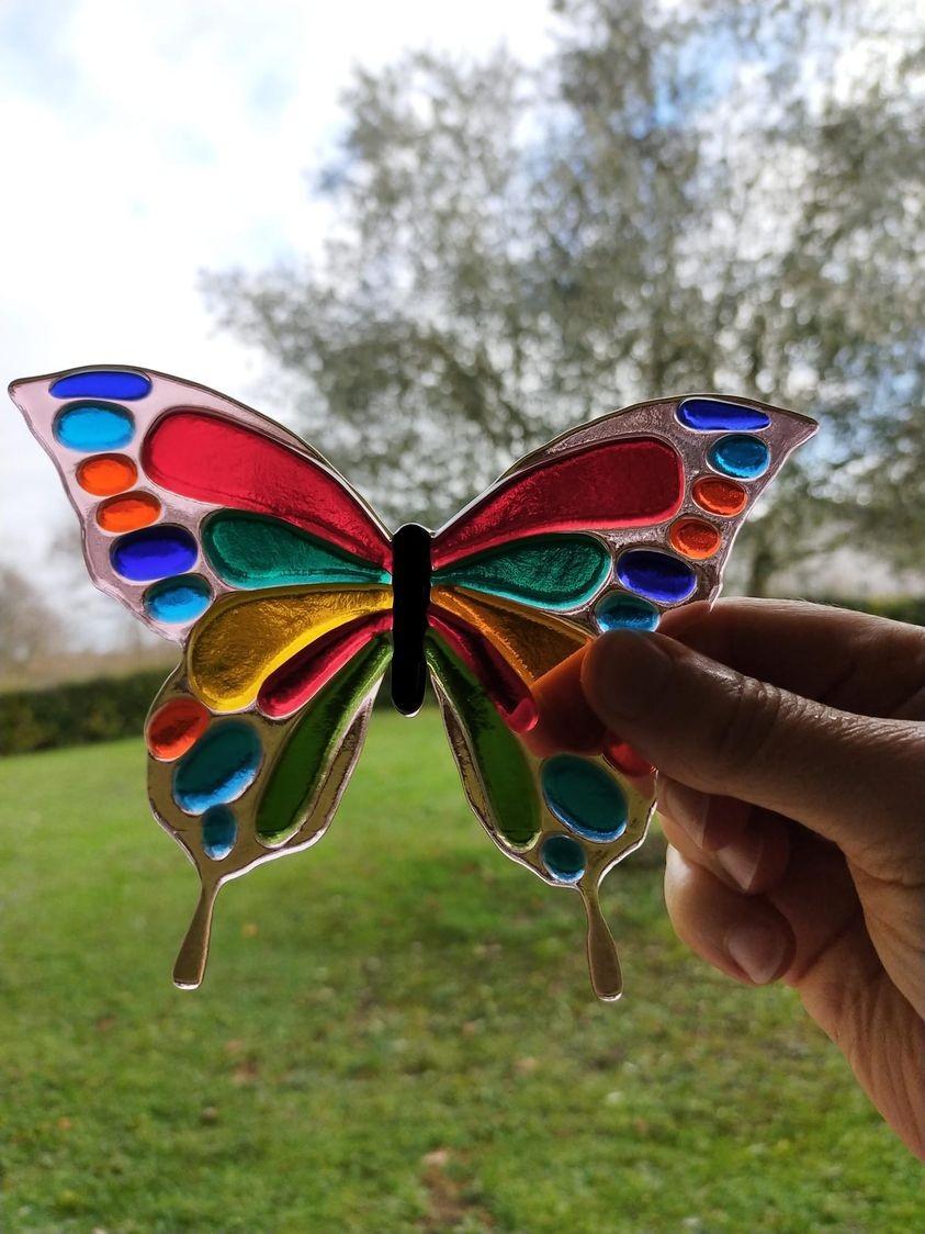 Papillon myriam